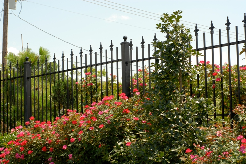 Kodiak Iron - Galvanized Iron Fence Panel - Regal